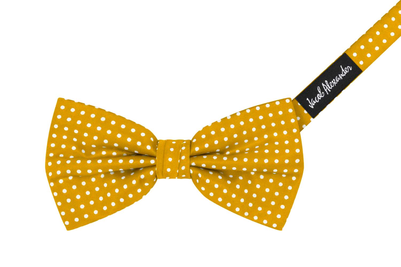Jacob-Alexander-Matching-Polka-Dot-Suspenders-Handkerchief-and-Bow-Tie thumbnail 69