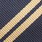 Navy Blue & Gold